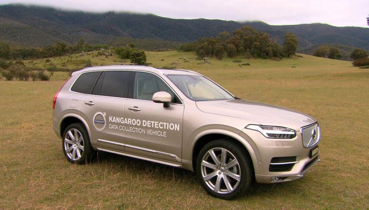 Australia, i canguri fanno saltare la guida autonoma Volvo - Foto 1 di 7