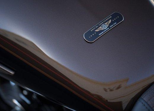Harley-Davidson modelli 110th Anniversary - Foto 5 di 36