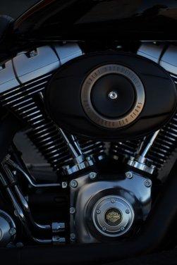 Harley-Davidson modelli 110th Anniversary - Foto 7 di 36