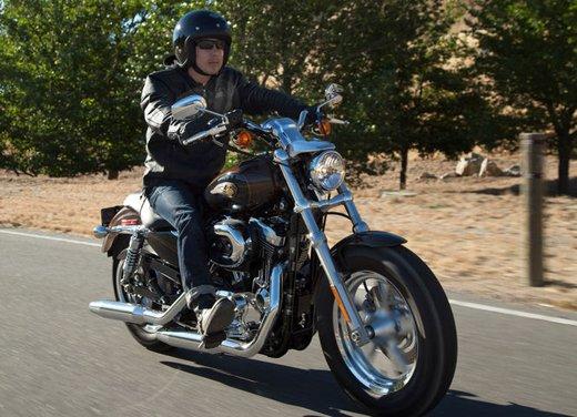 Harley-Davidson modelli 110th Anniversary - Foto 13 di 36