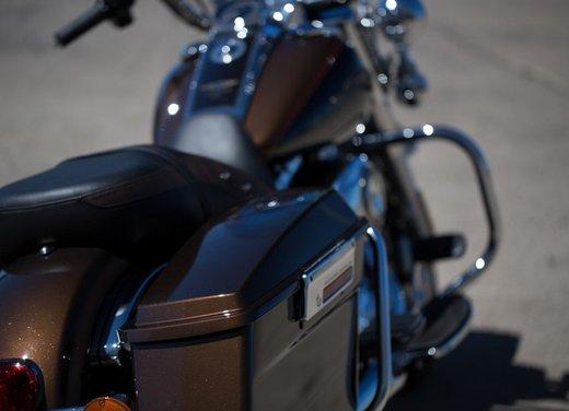 Harley-Davidson modelli 110th Anniversary - Foto 20 di 36