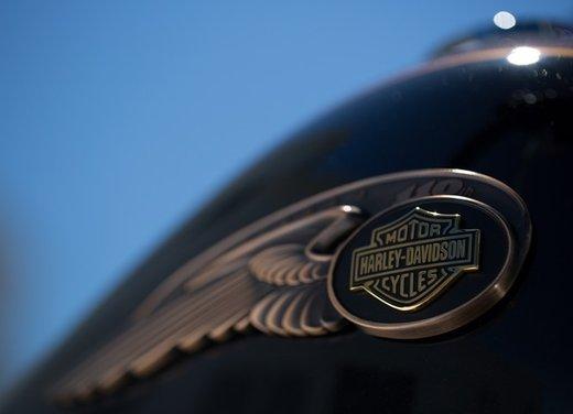 Harley-Davidson modelli 110th Anniversary - Foto 22 di 36