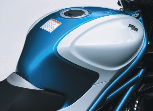 Suzuki Gladius – Long Test Ride - Foto 1 di 3