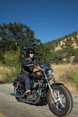 Harley-Davidson modelli 110th Anniversary - Foto 31 di 36