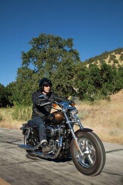 Harley-Davidson modelli 110th Anniversary - Foto 32 di 36