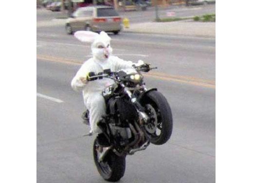 Bmw Motorrad, una gallery delle moto più strane e simpatiche - Foto 6 di 20