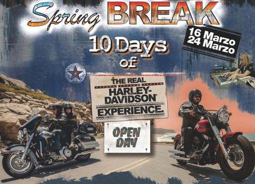 Harley Davidson Spring Break 2013 - Foto 1 di 7