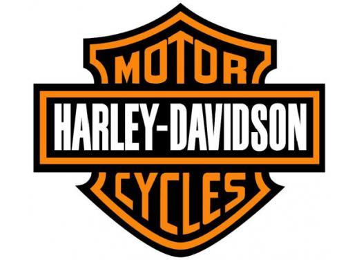 Harley-Davidson, nuovo team regionale per Spagna, Portogallo e Italia - Foto 1 di 6