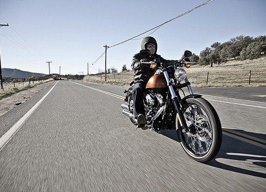 Harley Davidson Blackline - Foto 7 di 19