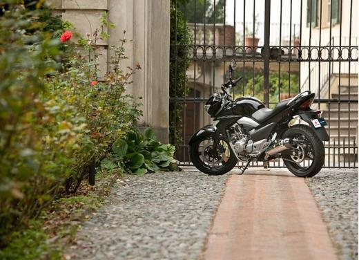 Suzuki Inazuma 250 in promozione a 3.490 euro - Foto 2 di 8