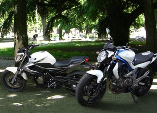Yamaha XJ6 vs Suzuki Gladius