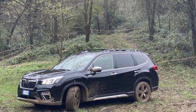 Subaru Forester e-Boxer, motori e prezzi del SUV ibrido