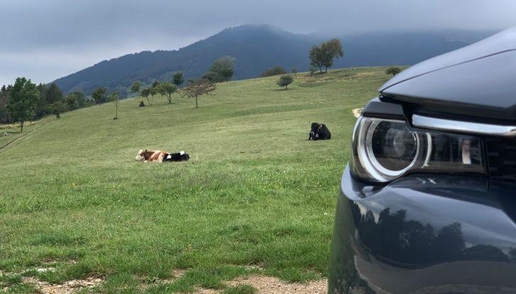 [VIDEO] Mazda MX-30, la prova consumi del SUV Elettrico - Foto 6 di 22