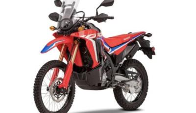 Honda CRF300L e CRF300 Rally: le novità per il 2021